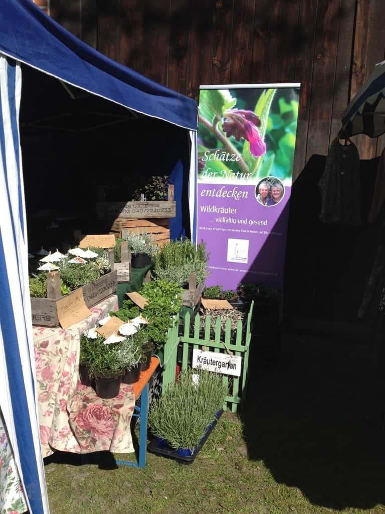 Kräuterpflanzen wurden ebenfalls angeboten.